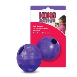 Kong cat treat ball