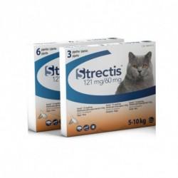 Strectis chat de 5 à 10 kg