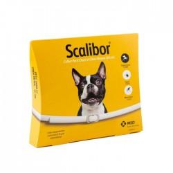Collier Scalibor petit chien