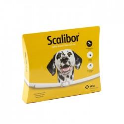 Collier scalibor grand chien