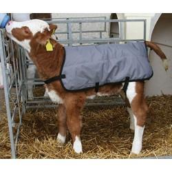Manteau polaire pour veau...
