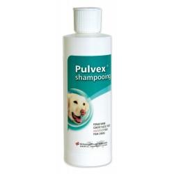 Pulvex Shampooing - Flacon...
