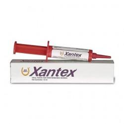 Xantex pâte orale - 4...