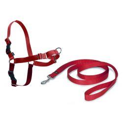 Harnais Easy Walk pour chiens de SafePet rouge   Taille M