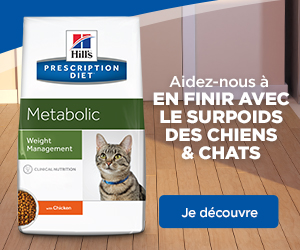Hill's Metabolic Weight Management Chat