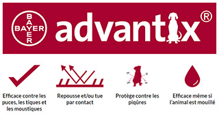 logo advantix bayer